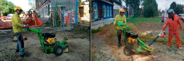 Удалить пень на даче в Раменском районе.