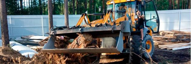 Удаление деревьев и пней в любом районе Московской области
